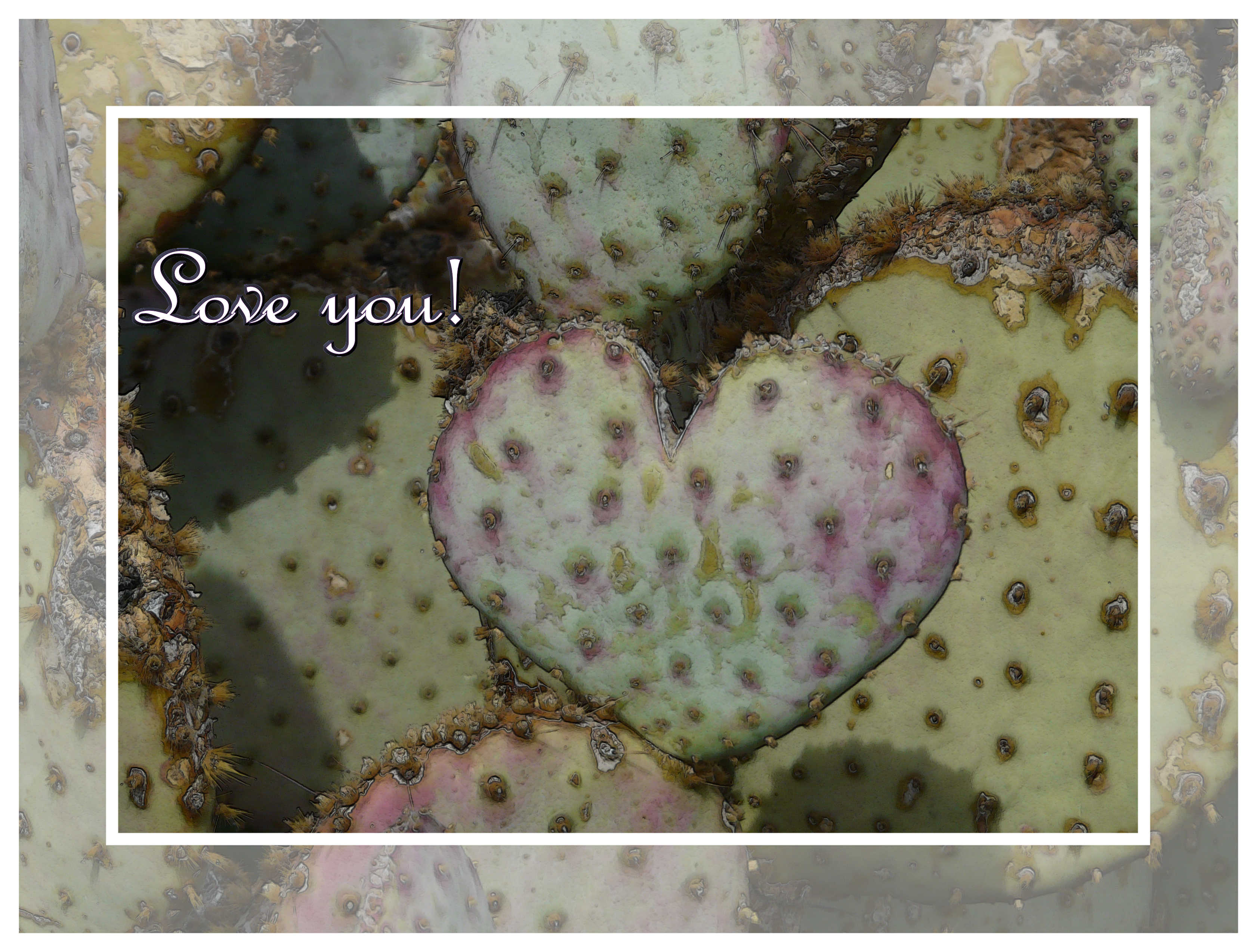 Prickly Pear shaped like heart