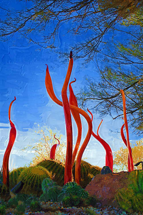 Glass Art By Dale Chihuly Taken At Desert Botanical Garden, Phoenix AZ