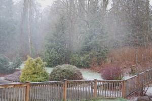 april-1-2009-snow-2