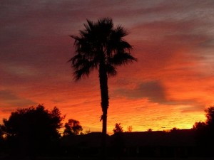 Peoria, Arizona sunset by David Crook