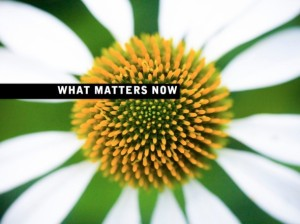 draft_lens8526061module73978041photo_1260716332coverwhat_matters_now001