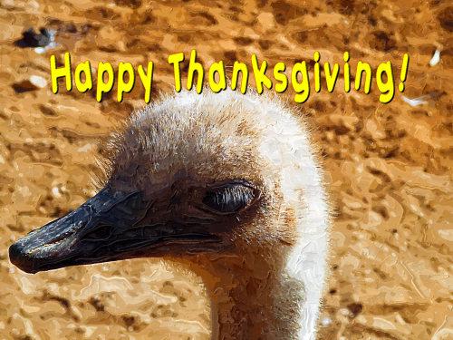 thanksgivingblog1